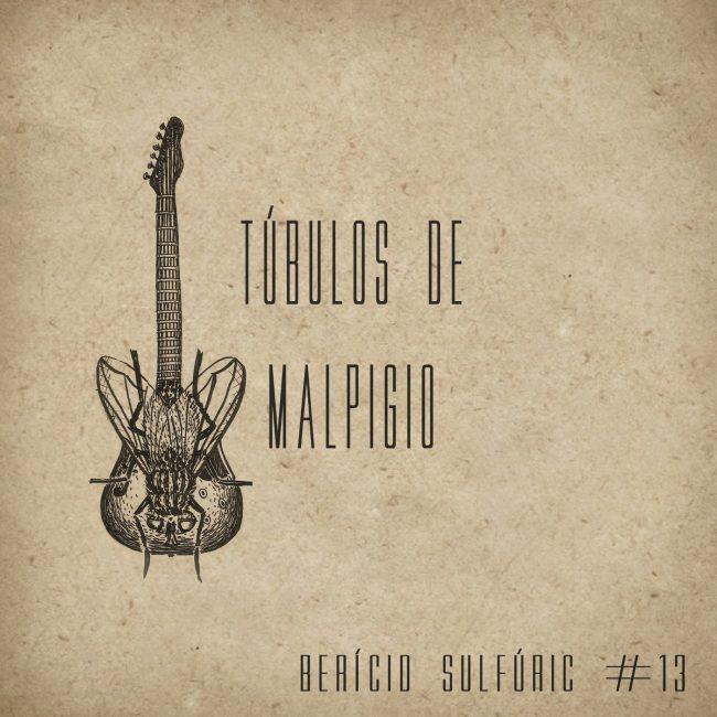 13 – Túbulos de Malpigio